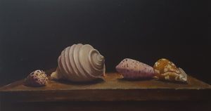 A realistic still life with four exotic little shells lying on a birdhouse on its side.